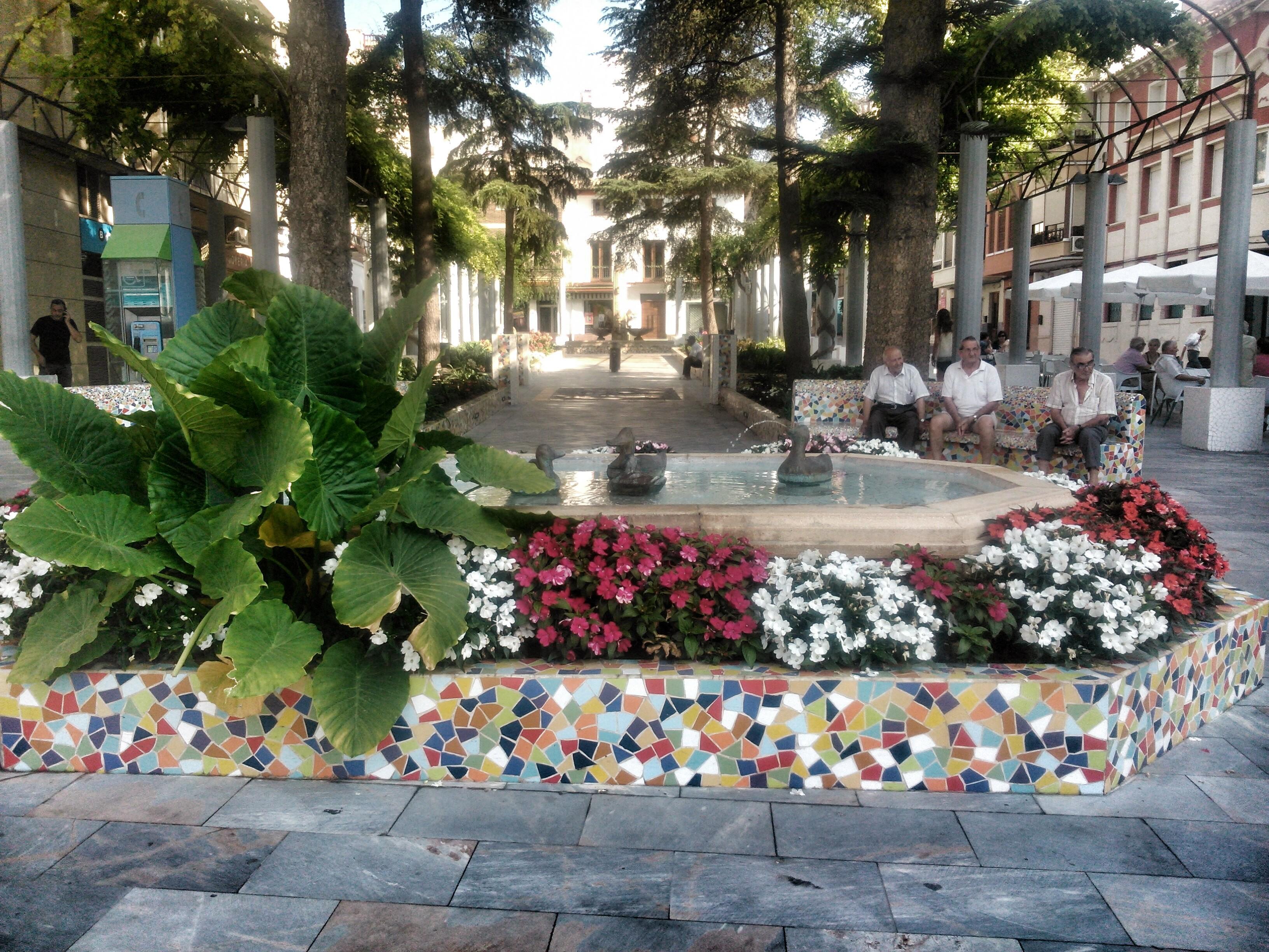 Plaza en Alama de Murcia ( España)